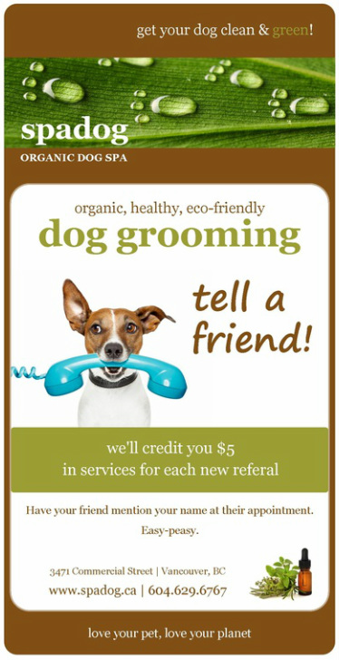 tell a friend about spa dog!